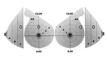 Descrittori della mammella